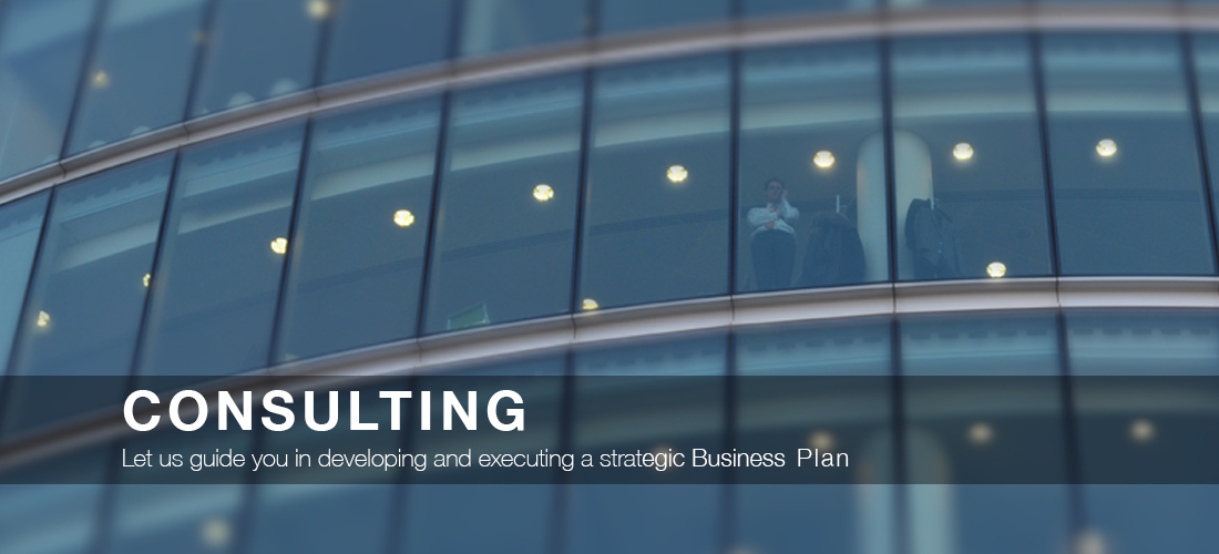 Consulting Page Slide3